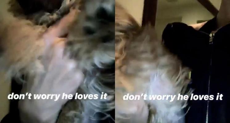 小贾老婆海莉「单手甩爱犬」!危险动作网看傻:牠不是玩具!插图5