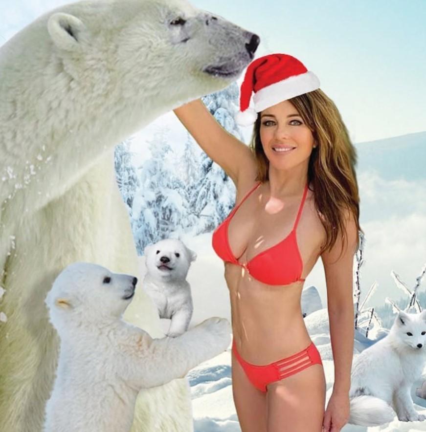麦莉、派瑞丝都输她!「美魔女」穿比基尼同框北极熊 火辣庆圣诞插图4