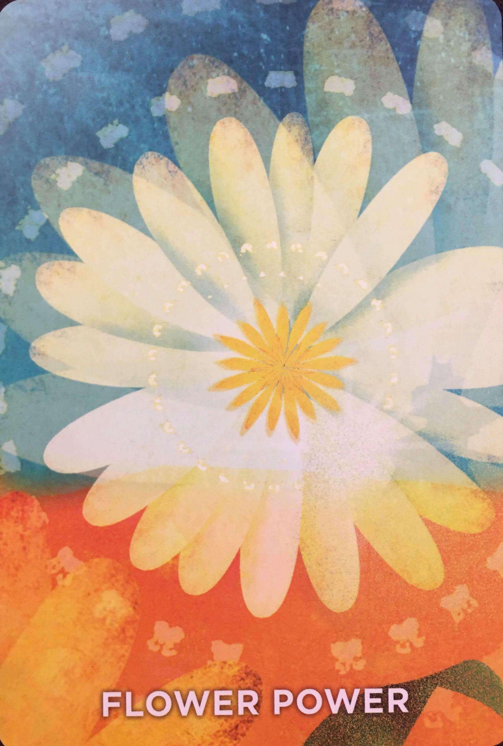 每週占卜/静心选一张牌 测我的指导灵「想提醒我什么事」?