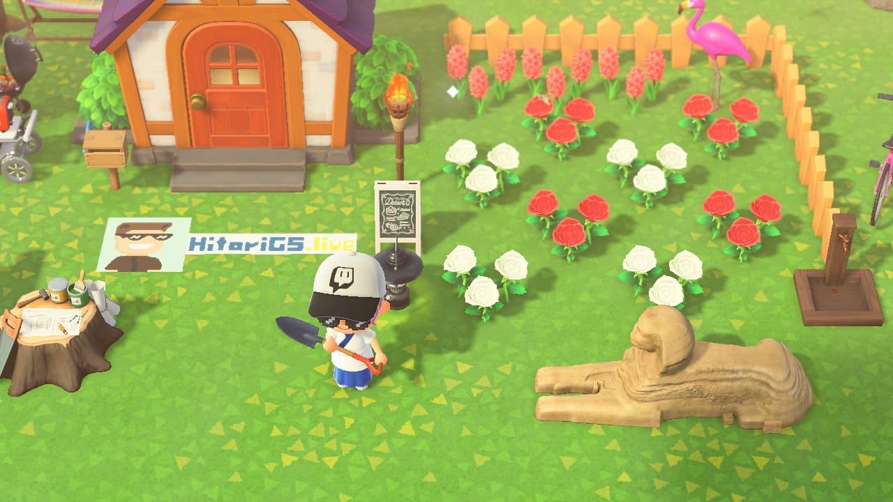 攻略 / 《动物森友会》该如何种花?「特殊花色培育法」大公开插图5